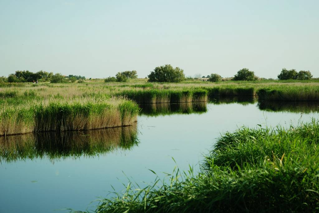 Estudian los vínculos entre los ecosistemas y el bienestar cuidadano