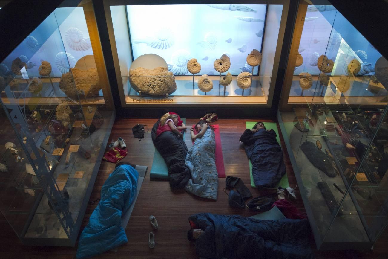 Cada viernes, dos grupos de niños entre 8 y 12 años llevan sus sacos y esterillas hasta el Museo Nacional de Ciencias Naturales de Madrid. / SINC