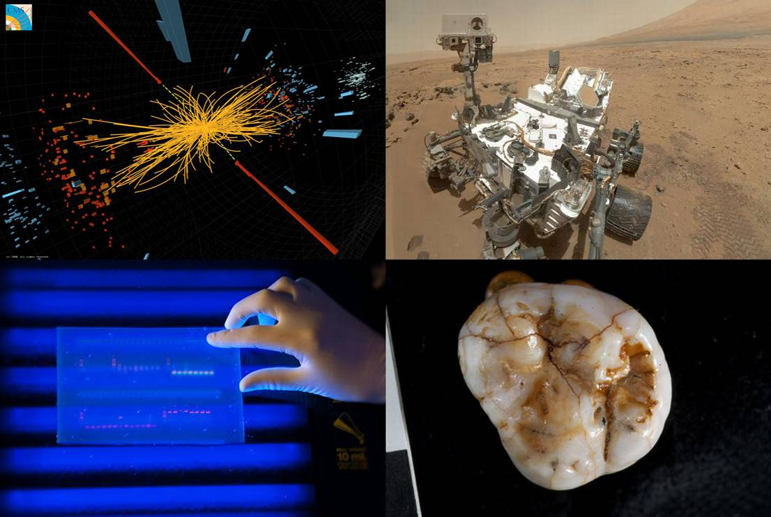 De izquierda a derecha y de arriba a abajo: simulación del bosón de higgs, autorretrato del Curiosity en Marte, secuenciación de ADN y molar descubierto en la cueva Denisova. Imagen: varios autores