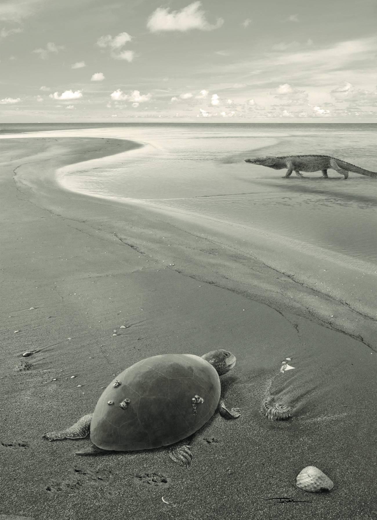 Reconstrucción de 'Plesiochelyidae indeterminado' en un paisaje costero del Jurásico superior ibérico. / Iván Gromicho