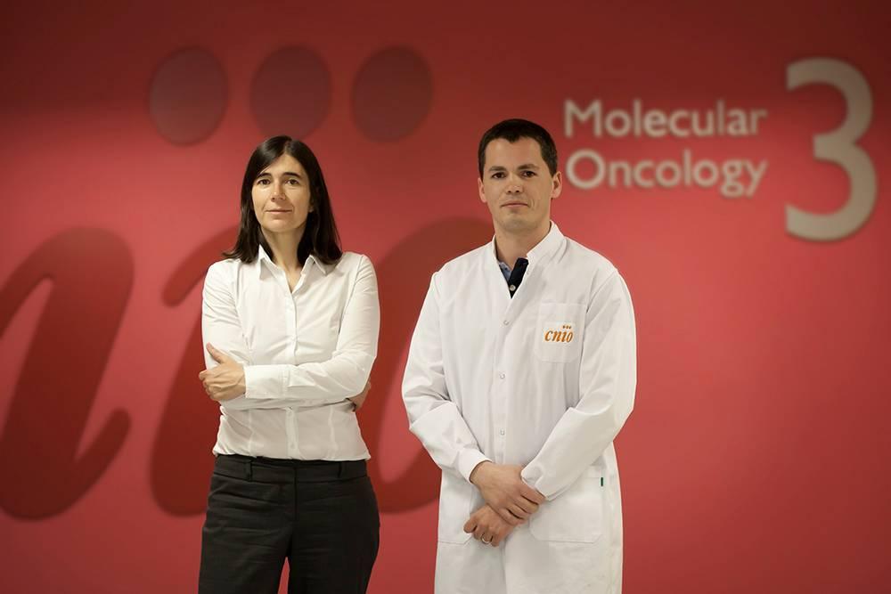 Los investigadores María Blasco y Bruno M. Bernardes de Jesús. Imagen: CNIO.