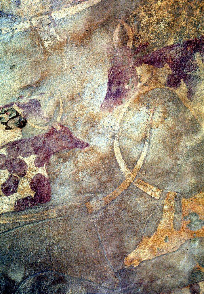 Otra prueba evidente del pastoreo prehistórico en el norte de África proviene de las pinturas rupestres y grabados del Sáhara. Imagen: Roberto Ceccacci. The Archaeological Mission in the Sahara, Sapienza University of Rome.