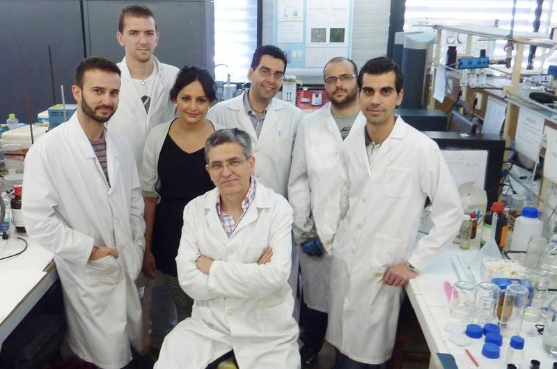 Grupo de investigación Tecnología y Diseño de Productos Multicomponentes de la Universidad de Sevilla. / Fundación Descubre.