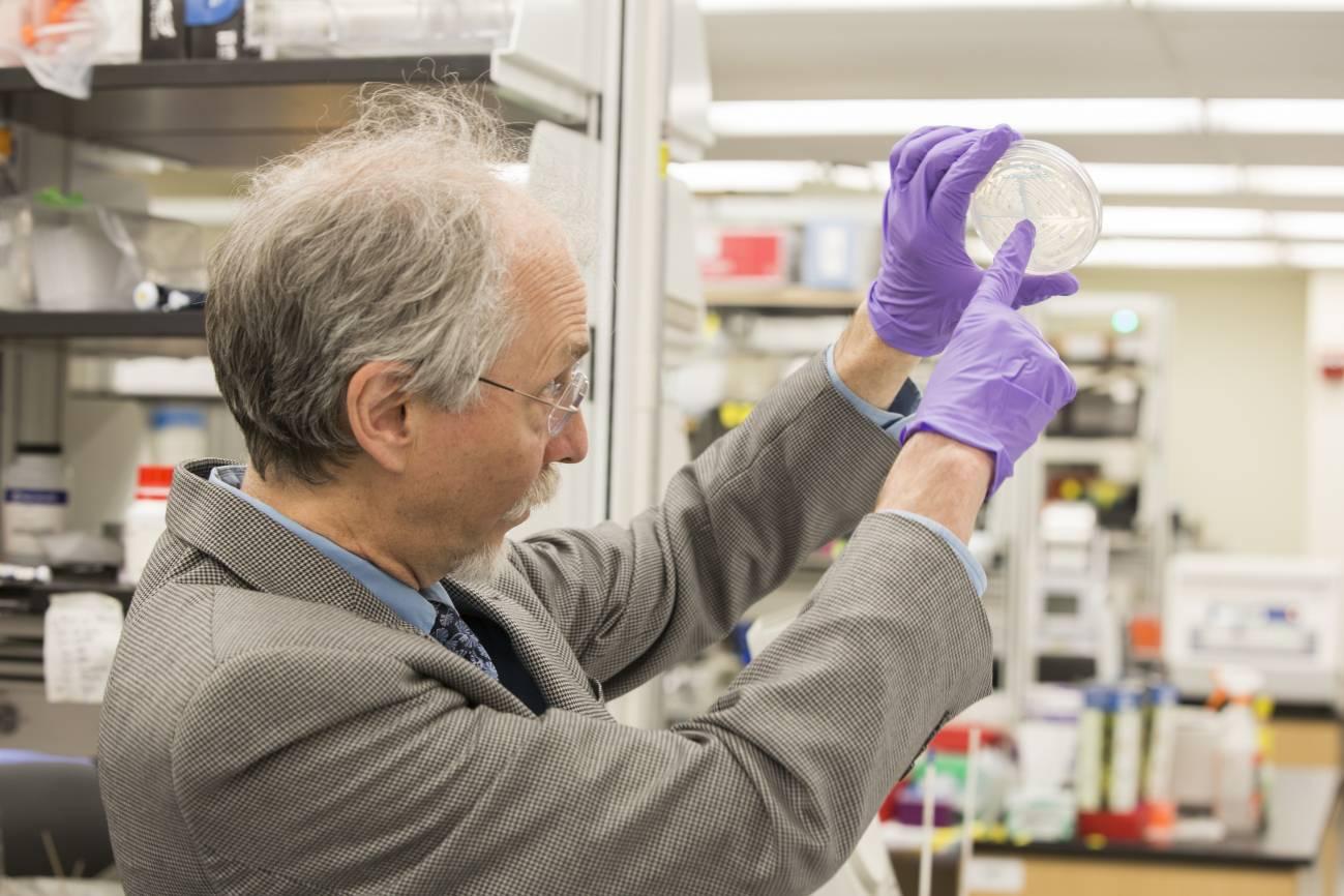 El investigador Jef Boeke en el laboratorio.