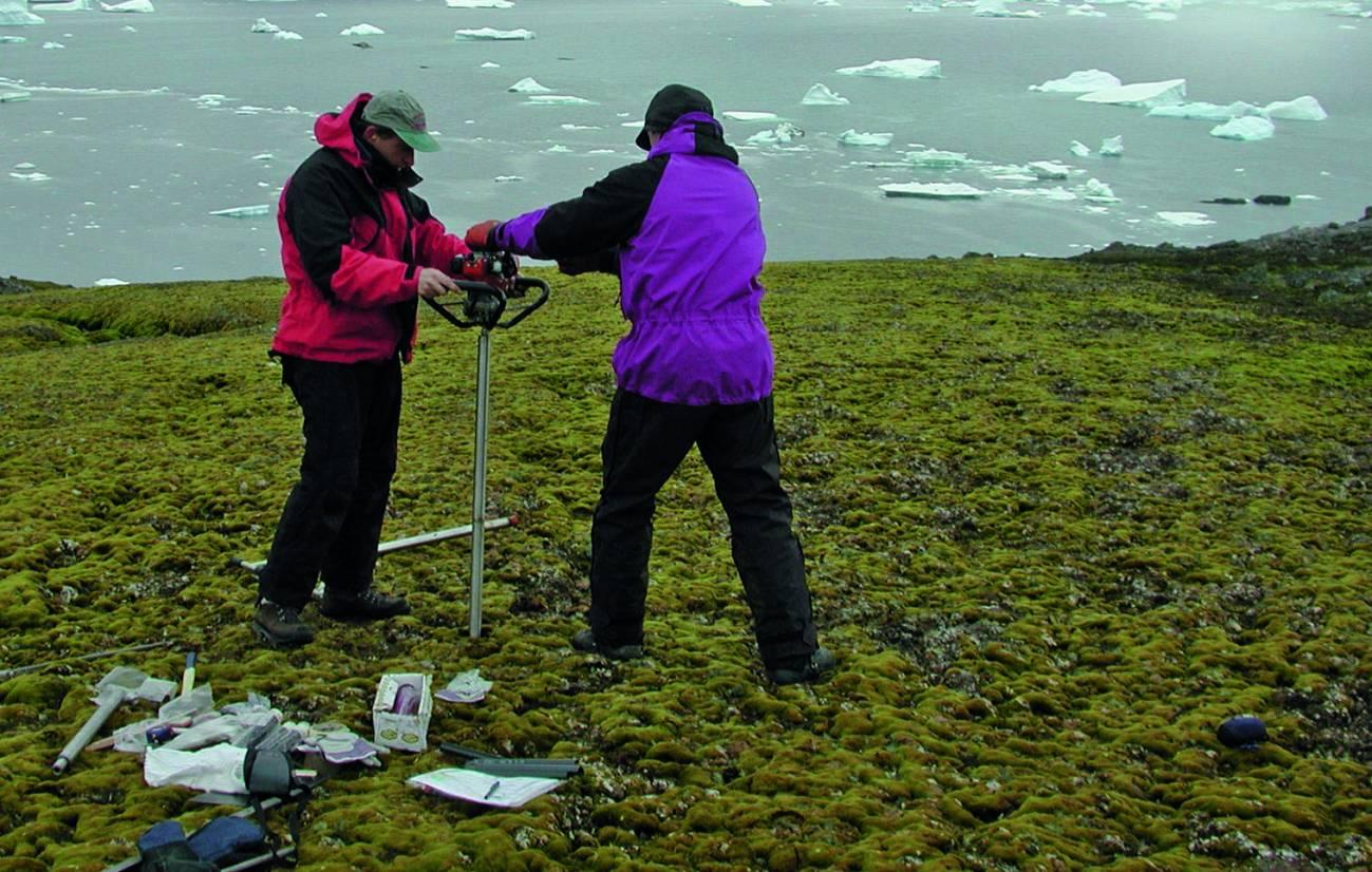 Los investigadores cogen una muestra de musgo en la zona del estudio. / P.Boelen