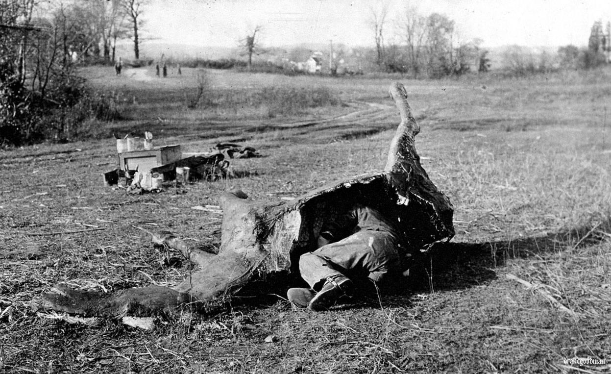 Cualquier cosa era buena con tal de que el enemigo no te viera. Se inventaron camuflajes tan curiosos como estos caballos de la imagen que eran usados por francotiradores. / U.S. Army Signal Corps / Brett Butterworth