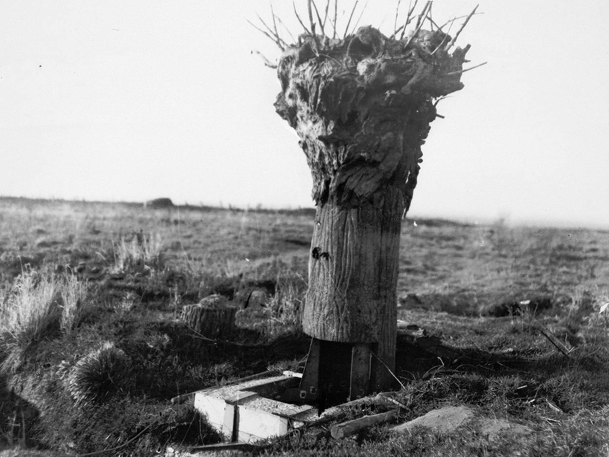 En la imagen, un falso árbol británico usado como puesto de observación.