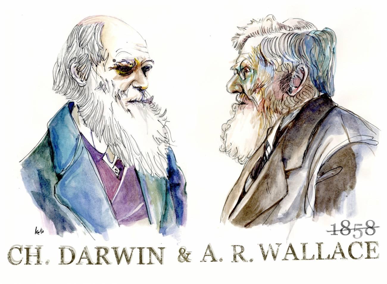 El 1 de julio de 1858 Darwin y Wallace presentan su teoría de la evolución