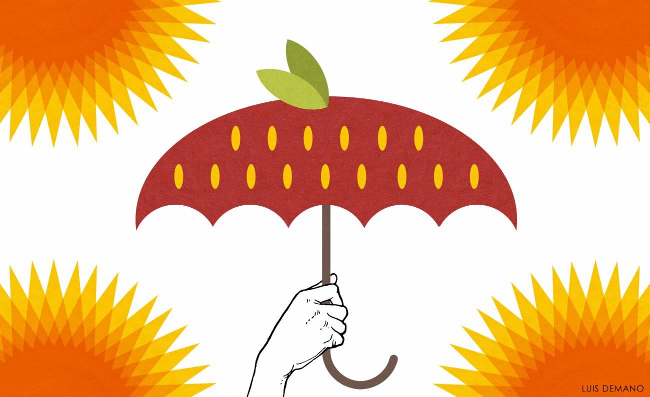 Los antioxidantes de los frutos rojos pueden prevenir los daños en la piel provocados por los rayos ultravioleta