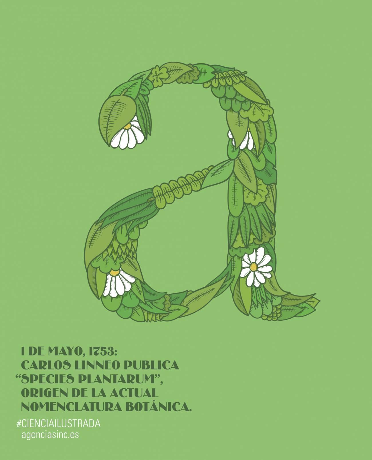 'Species Plantarum' de Linneo ve la luz hace 260 años