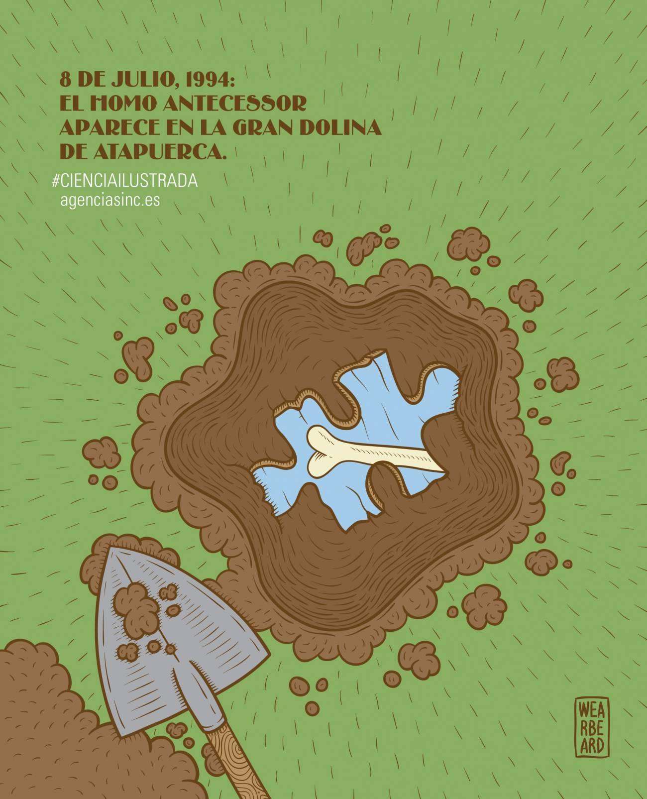 Se cumplen 20 años de la aparición de los primeros restos de 'Homo antecessor' en Atapuerca. SINC