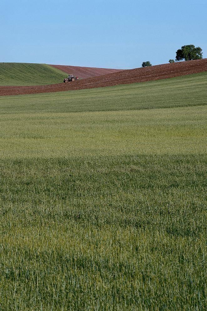 De la cultura rural al desarrollo sostenible