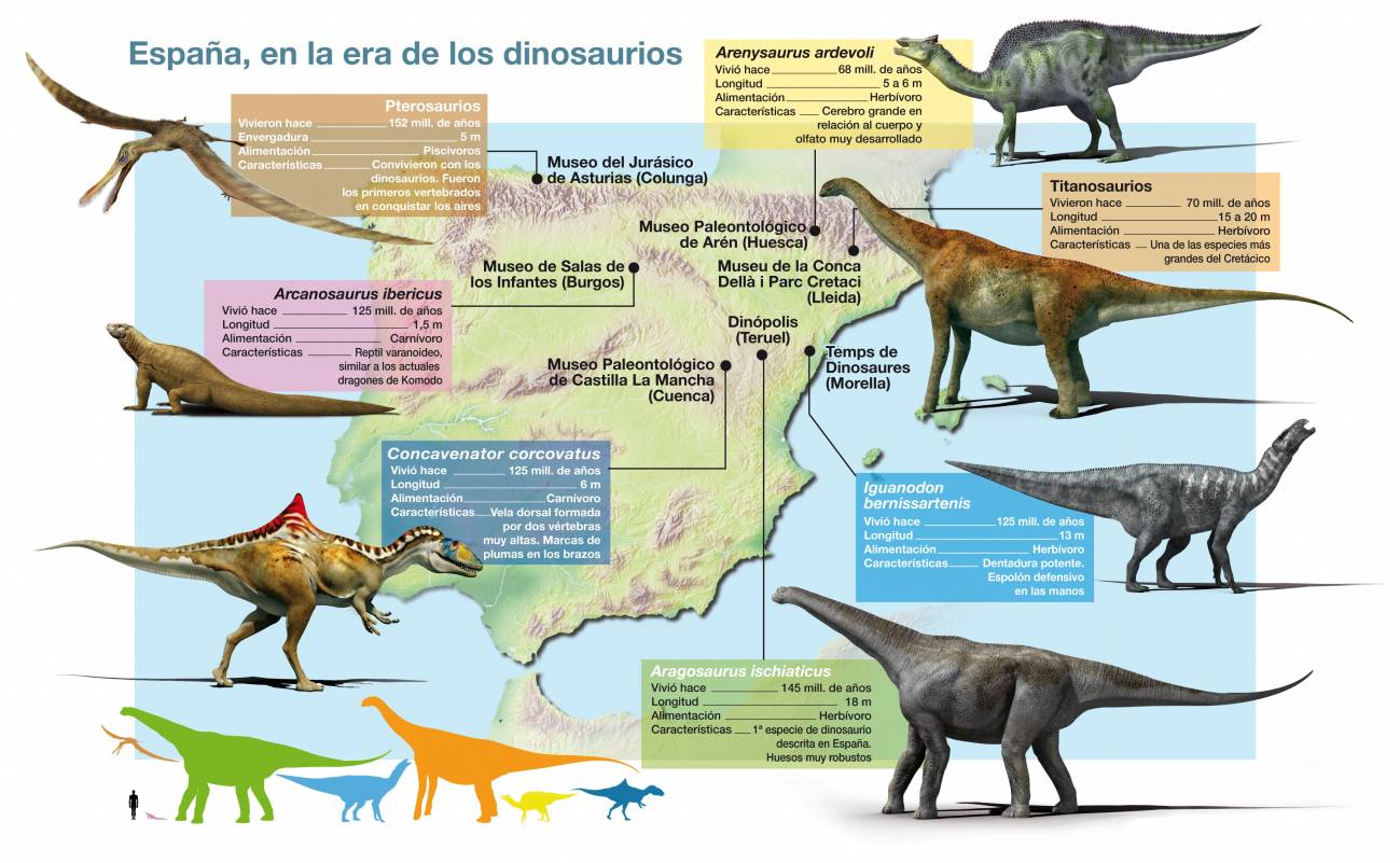 Sinc Dinosaurs were reptiles and most hatched from eggs. sinc