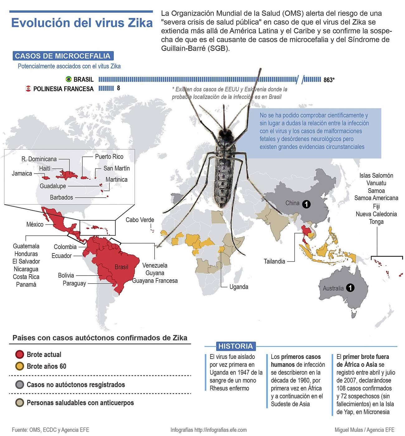 Infografía explicativa de la evolución del zika. / Efe