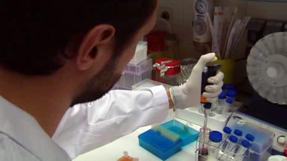 resistencias en cáncer colorrectal