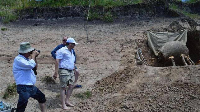 Encuentran en Uruguay un gliptodonte