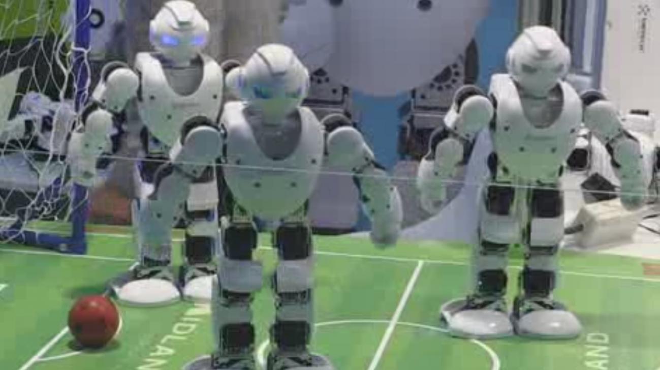 España quiere ser un referente internacional en robótica