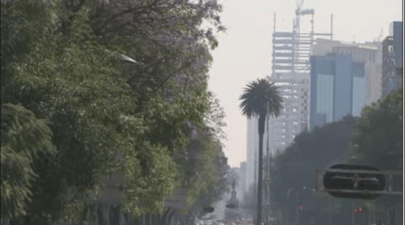 Los altos niveles de contaminación