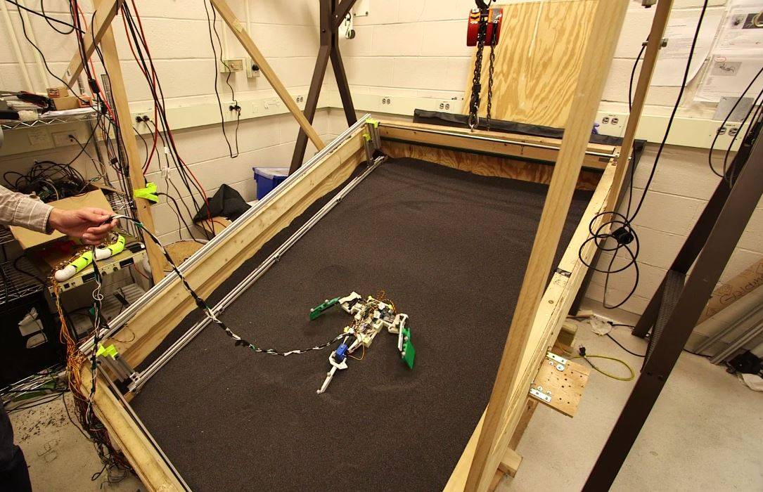 El robot imita a los primeros animales terrestres. / Georgia Tech
