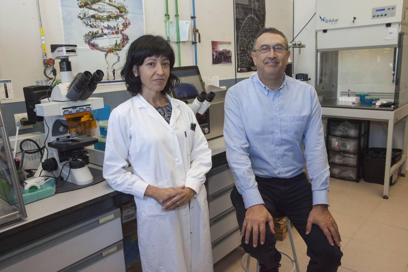 Investigadores del Grupo de Síntesis Orgánica de la UJI