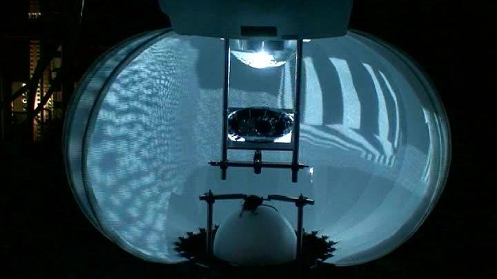 Realidad virtual para estudiar el cerebro