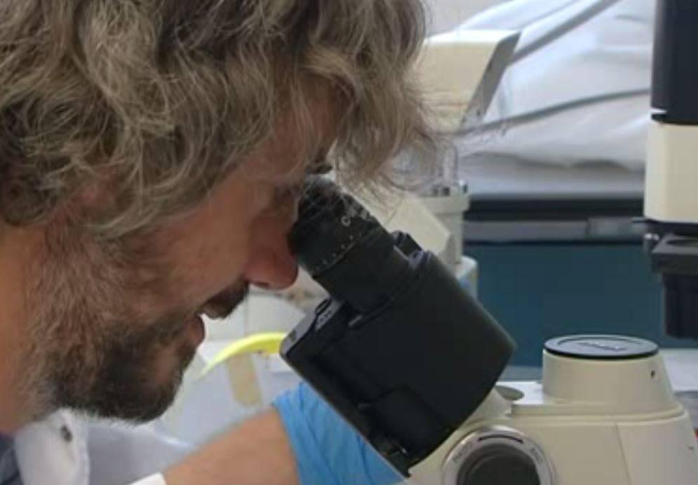 Nuevo medicamento consigue frenar el cáncer de colon