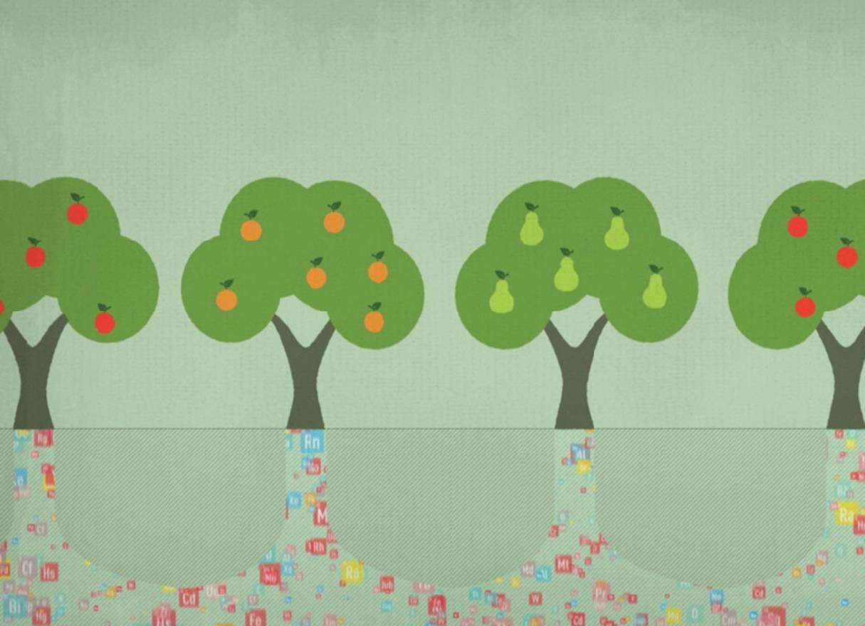 Fotograma de la animación audiovisual que representa las aportaciones de la química a la alimentación.