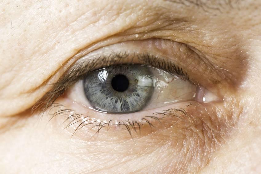 se cura la toxoplasmosis en humanos