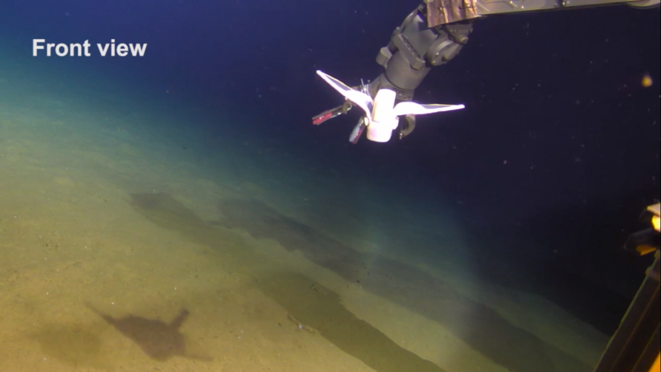 Un robot blando con aspecto de pez consigue nadar en las profundidades de las Marianas
