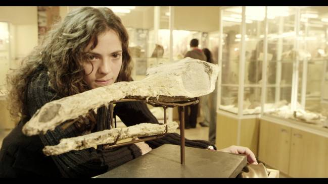 Imagen del cráneo del cocodrilo expuesto en la UZ, junto a la investigadora Jara Parrila .