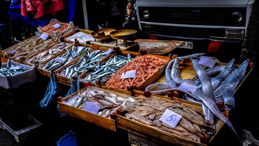 mostrador de una pescadería