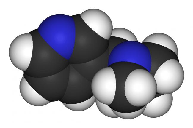 Molécula de la nicotina. Imagen: Wikipedia.