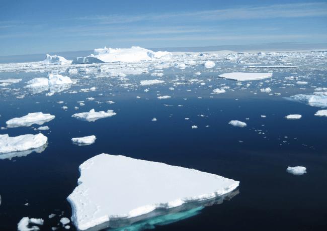 Icebergs flotan en el océano Antártico. / Science