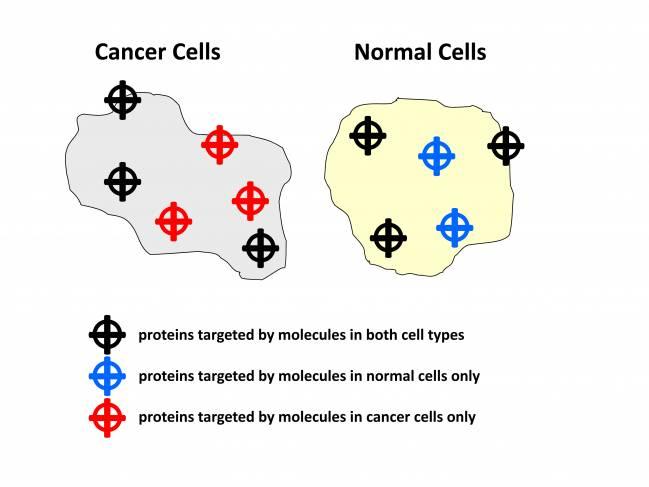 Una célula sana y otra cancerígena