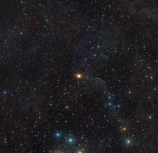 nebulosa Toby Jug