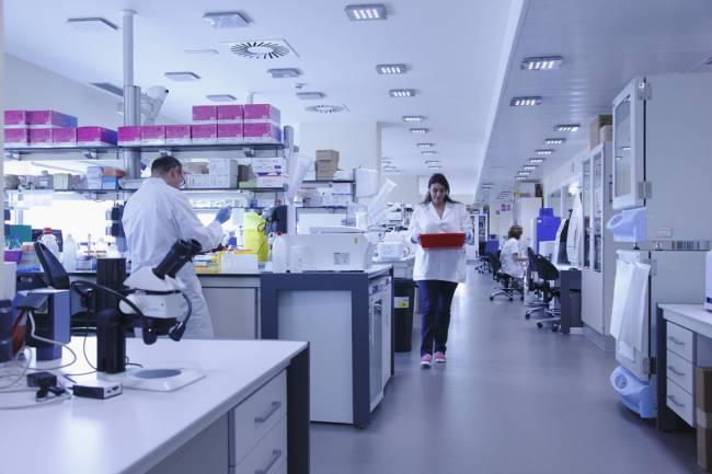 laboratorios IDIBAPS