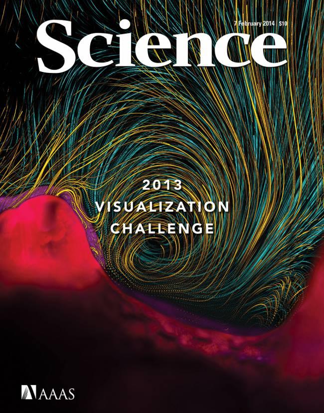Desafío Internacional de Visualización en Ciencia e Ingeniería 2013. / Science