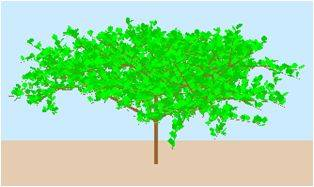Modelo de árbol obtenido con SIMLIDAR.