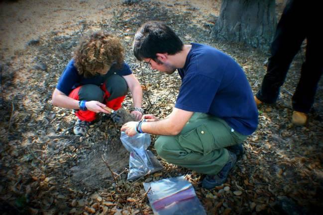 Investigadores regiendo muestras de suelo