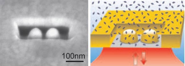 Antena dentro de una nanocaja para analizar biomoleculas individuales en grandes concentraciones