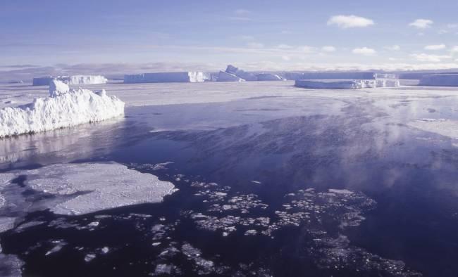 Incluso en las zonas polares, durante el invierno, una proporción elevada de las bacterias tienen rodopsinas. / Carlos Pedrós-Alió, CNB-CSIC