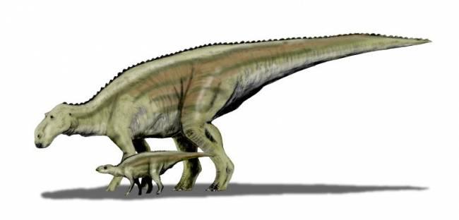 Reconstrucción de Maiasaura peeblesorum