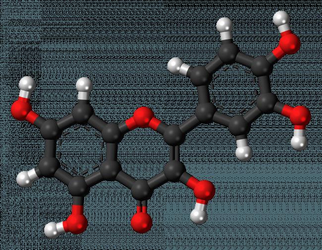 Es necesario el desarrollo de formulaciones de la quercetina capaces de mejorar su solubilidad en agua y de impedir su degradación en el proceso digestivo