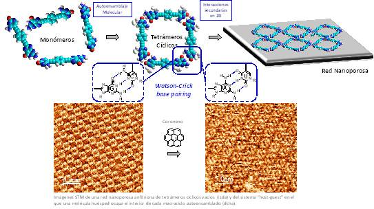 Auto-ensamblaje en 2 dimensiones bio-inspirado en la asociación del ADN