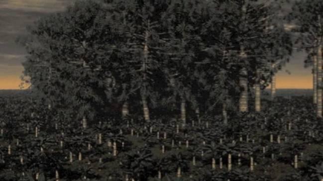 Investigadores de la Universidad de Pekín (China) han encontrado restos de un grillo del Jurásico medio en inigualables condiciones. Imagen: Science