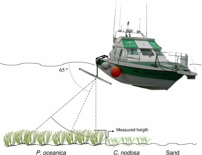 Ilustración de cómo funciona el sónar instalado en la embarcación
