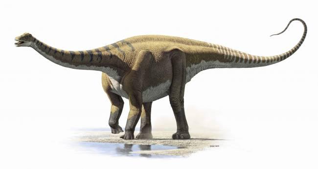 Recreación de 'Demandasaurus darwini'