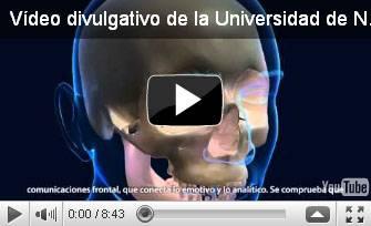 """Vídeo """"Cerebro ético: atajo emocional ante dilemas"""""""