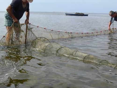 Pesca en Poble Nou del Delta (Montsià). Foto: Josep Torta.