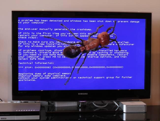 Los algoritmos basados en colonias de hormigas encuentran los defectos del software eficientemente. /INTEF y wikimedia commons (composición de elaboración propia).